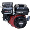 Двигатель Briggs & Stratton 550 Series (4л.с.) для Крота